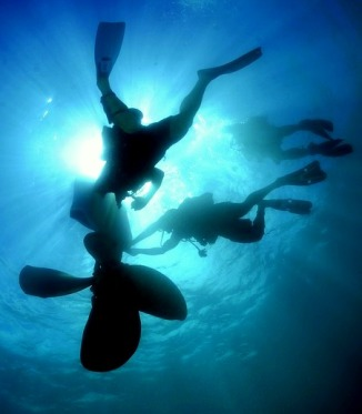 Efficient enterprise learning requires deep sea diving like effort