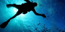 Enterprise learning requires deep sea diving like effort